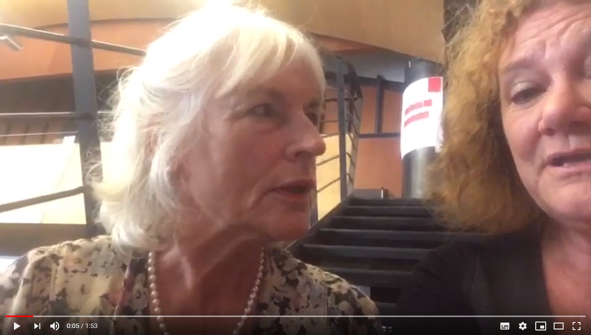 ANSE Summer University 2019 - vlog 13: interview Brigitte Geissler-Piltz