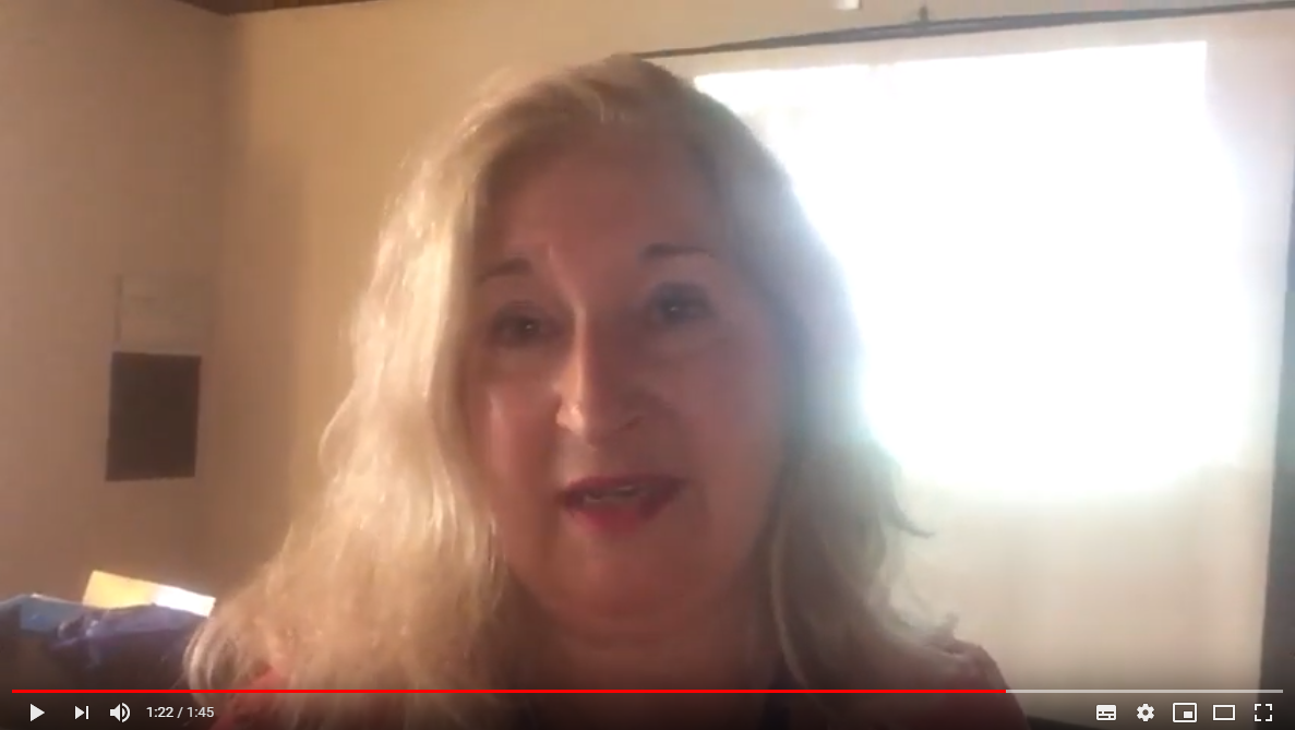 ANSE Summer University 2019 - vlog 7: Gesprek met Inge Hageman over haar VIO-workshop