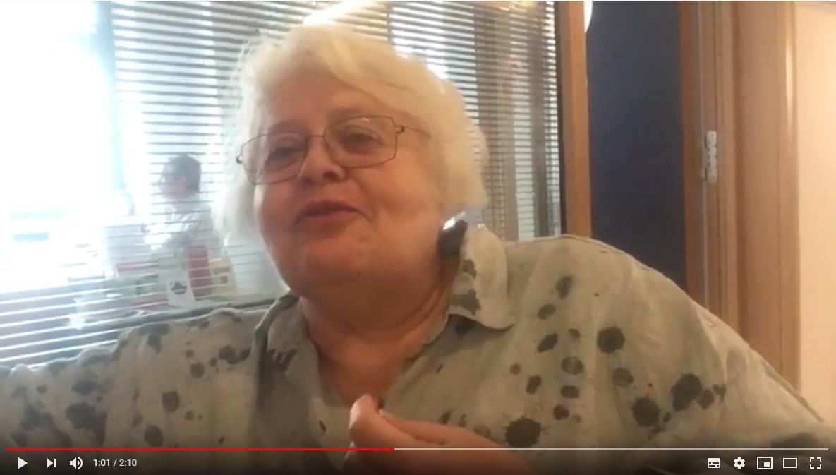 ANSE Summer University 2019 - vlog 9: interview Elisabeth Alder (Sissi)